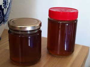 Dandelion Honey by Chocolate Log Blog